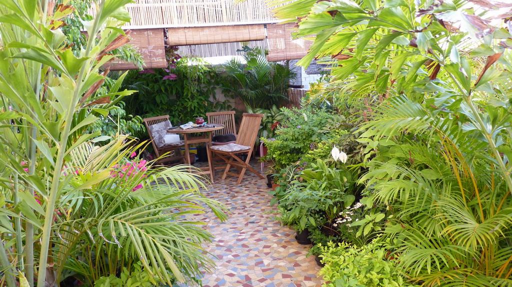 Jardin balcon le de la r union nouvelle version for Jardin 974